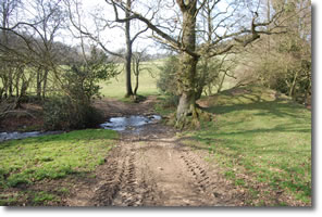 Track down to River Foss