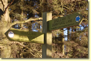Waymark to Mugdale